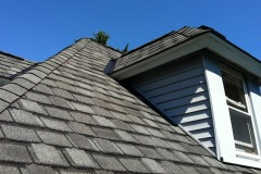 new-shingle-roofing1